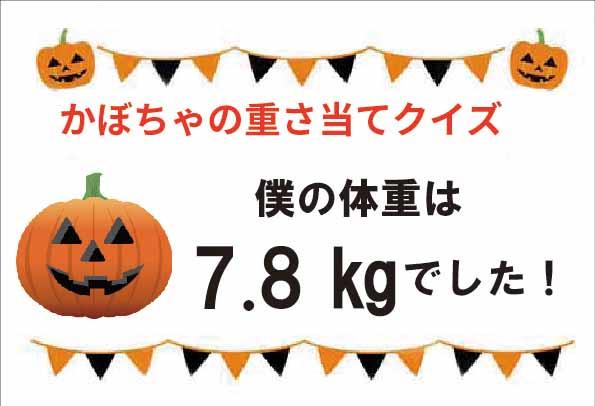 かぼちゃ重さ当てクイズ結果発表!🎃